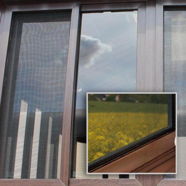 window with screen